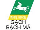 logo-bach-ma