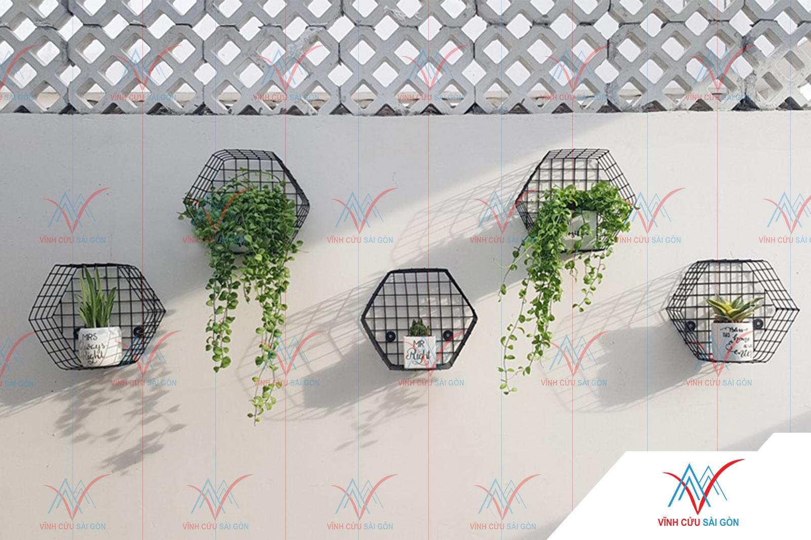 Hình ảnh công trình thực tế sử dụng Gạch trồng cỏ 8 lỗ láng không vát cạnh-2